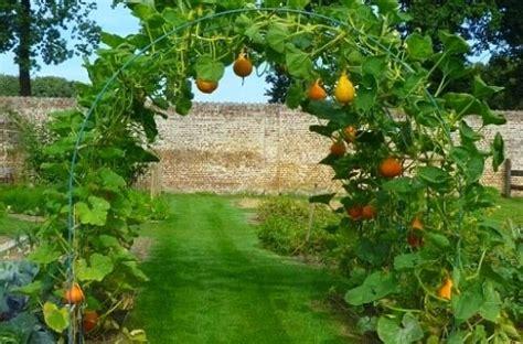 Veggie Garden Arch Mariondee Designs Veggie Patch Garden Arch Inspiration