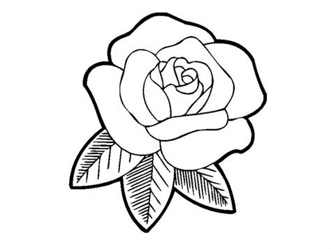 coloring pages of red roses printable rose coloring pages for kids fitfru style