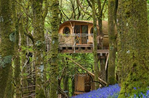 treehouse holiday   uk magical  bed house