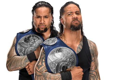 the usos championship picture from wwe com squaredcircle