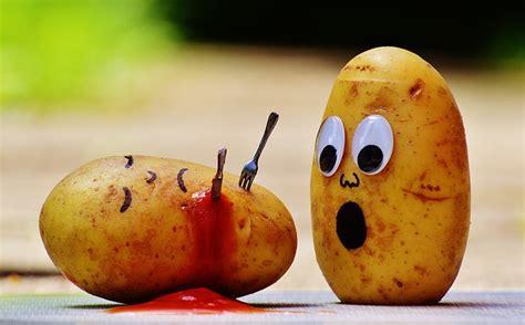 Potato Program by Free Photo Potatoes Ketchup Murder Blood Free Image On Pixabay 1448405