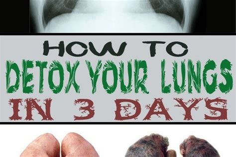 How To Detox From In 3 Weeks by How To Remove Toxins While Sleeping Info You Should