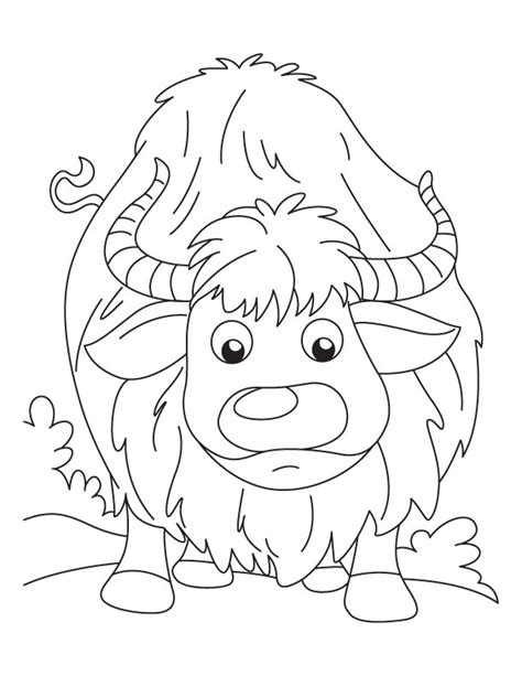 free coloring pages yak colouring pages yak yak coloring pages