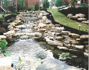 aquatic garden design and landscape living interior