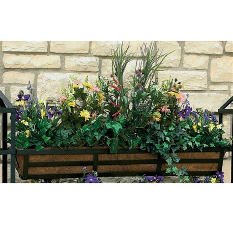 vertical gardening supplies wonderful wallflowers