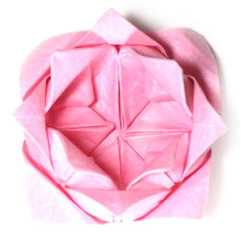 Origami Lotus Flower Pdf - how to make a traditional origami lotus flower page 23