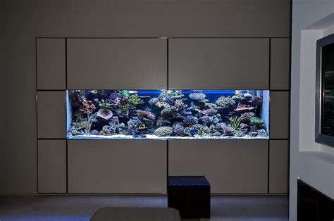 saltwater aquarium in wall 180 gallon in wall reef lets see some in wall aquarium pictures reef central
