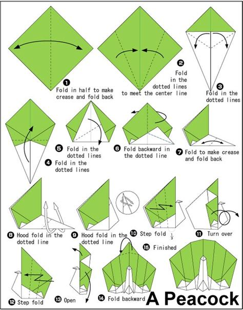 How To Make Origami Peacock - peacocks origami and colored paper on