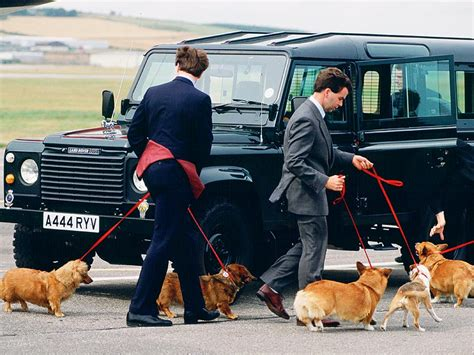 how many corgis does the queen have queen elizabeth ii says she will get no more corgis
