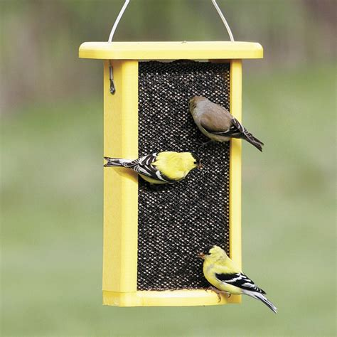 overview of pvc bird feeder pole annie marshall
