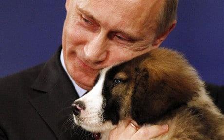 putin puppy vladimir putin given a puppy during trip to bulgaria telegraph