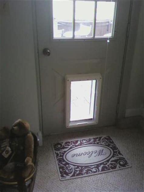 Secure Doggie Door by Best Electronic Door Review