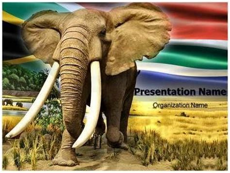 13 Best Images About Art Powerpoint Templates Culture Powerpoint Templates On Pinterest Elephant Powerpoint Template