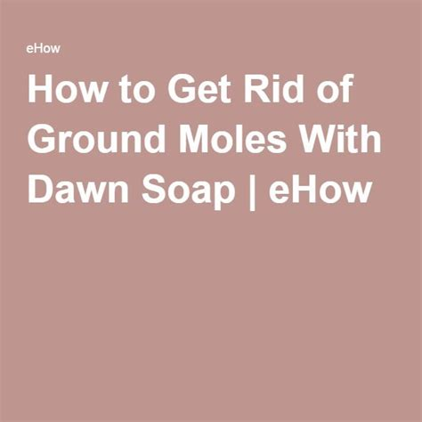 how to get rid of moles in the backyard how to get rid of ground moles with dawn soap soaps how