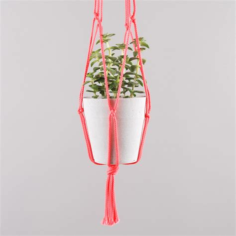 Plant Hooks And Hangers - goods by goodhood plant hanger neon pink