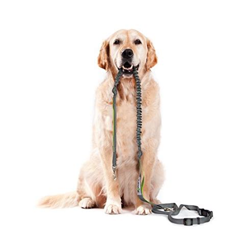 free of with dogs tuff mutt free leash for running walking hiking durable dual handle