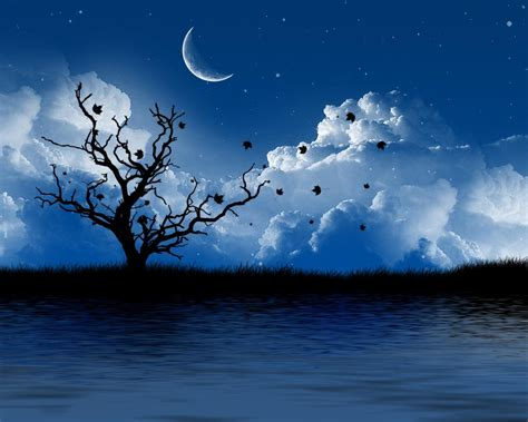 cool romantic wallpaper stock free images august 2011