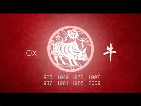 new year ox horoscope 2016 year of the ox 2016 horoscope