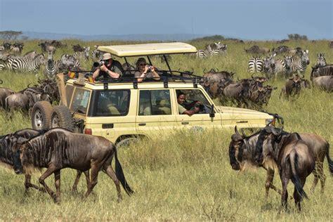 Safitri Syari introduction safari en tanzanie avec discovery safari