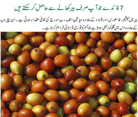 7 Uses For Fruit by 7 Amazing Health Benefits Of Jujube Fruit In Urdu Kfoods
