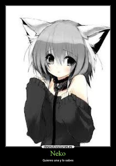 Imagenes De Anime Neko | im 225 genes y carteles de neko pag 58 desmotivaciones