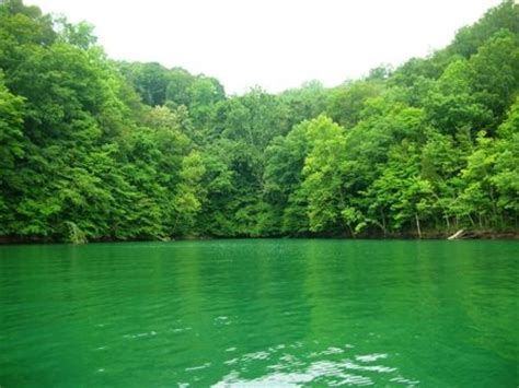 14 best images about Dale Hollow Lake on Pinterest