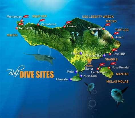 exploring amazing scuba dive sites bali  scuba