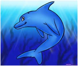 dolphin cartoons free coloring pages art coloring pages