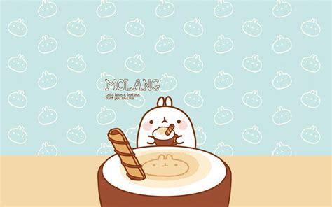 wallpaper cute molang cute characters molang