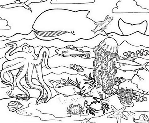 coloring book pages of sea animals ocean coloring pages