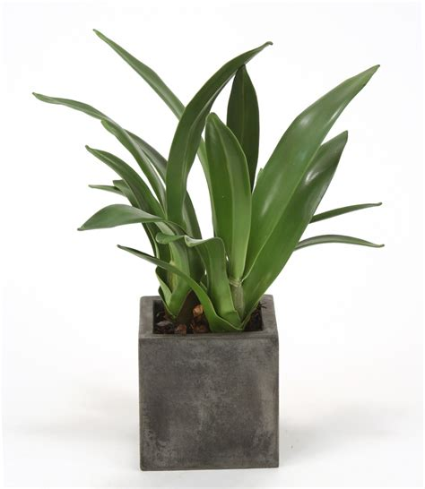 artificial plants for office desk silk orchid blades desk top plant in planter free