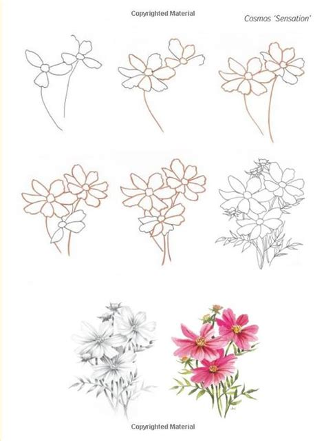 libro drawing made easy flowers how to draw flowers draw flowers and how to draw on