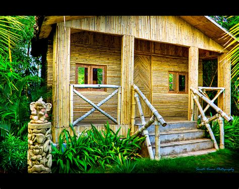 home design bamboo house