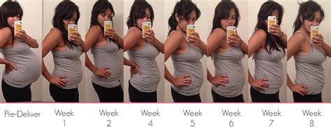 pregnancy stages day by day pregnancy about week by week