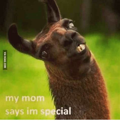 My Mom Meme - 25 best memes about mom says im special mom says im