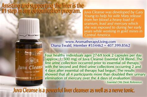 Essential Oils For Detox Brain by Living Juva Cleanse Essential Liver