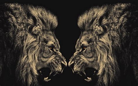 wallpaper abstract lion lion abstract wallpaper designs 3287 hd wallpapers site