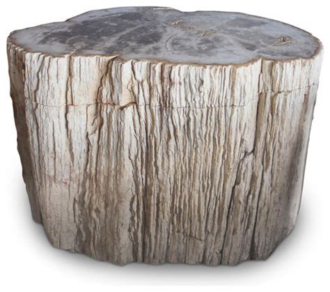 Petrified Wood Stool by Petrified Wood Log Stool Pf 2048 Rustic Accent And