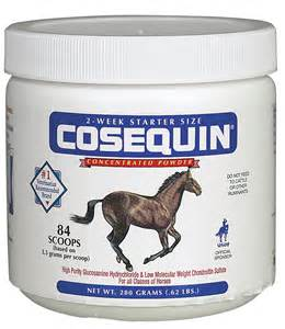 best joint supplement horse joint supplements equine joint supplements