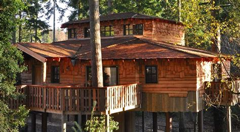 Real Log Homes Floor Plans by Ultimate 40th Birthday Celebration Ideas