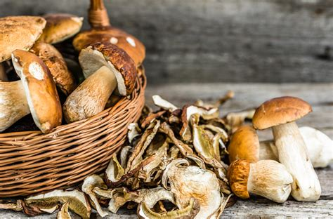 coltivare funghi in casa coltivare funghi in casa come essiccare il raccolto