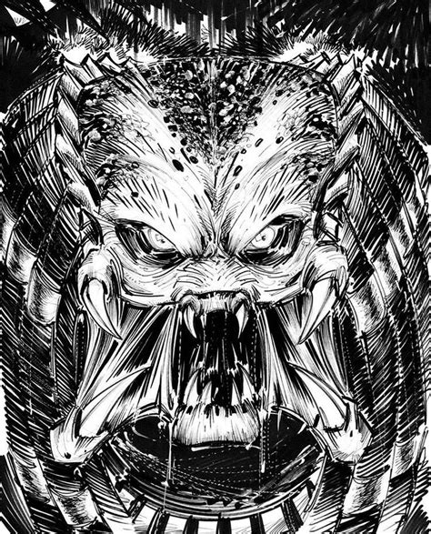 predator coloring pages 69 best predator coloring pages images on