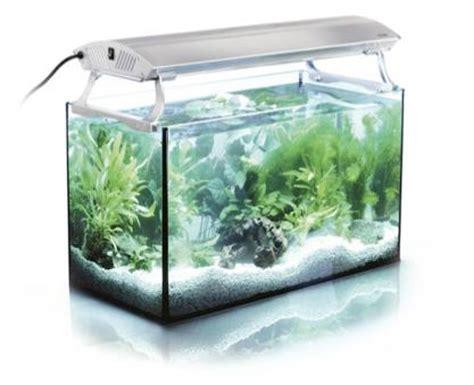 planted aquarium led lighting lighting archives the aquarium plant