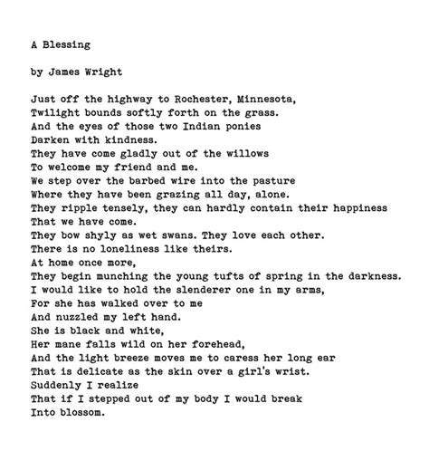 themes of a blessing by james wright 119 best images about visual poetry on pinterest robert
