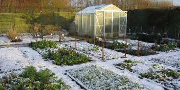 Backyard Winter Winter Gardening Tips Best Winter Crops And Cold Hardy