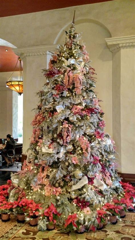 pin  christmas trees