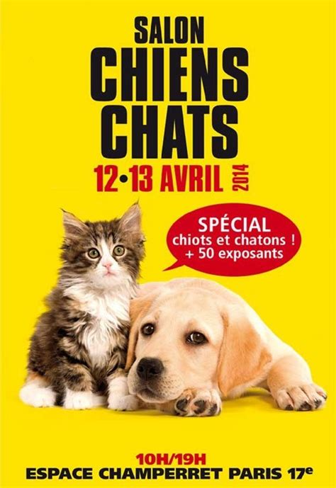 Incroyable Salon Du Chat Et Du Chien Paris #1: bourse-exposition-vente-salon-international-chat-chien-Paris-avril-2014-13-14-chaton-éleveurs-animal-animaux-animalière-expositions-compagnie-animogen-2.jpg