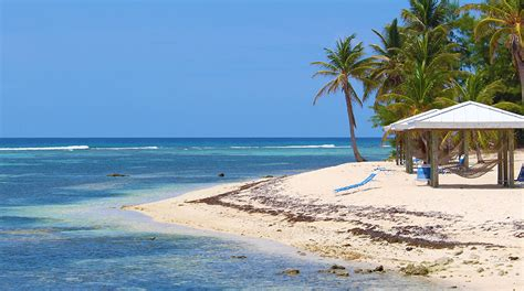 best all inclusive resort the 5 best cayman islands all inclusive resorts