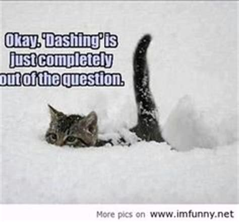 Hate Snow Meme - 1000 images about snow on pinterest snow quotes grumpy