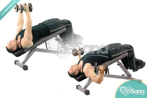 decline bench fly decline dumbbell flys